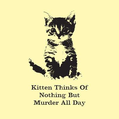 kitten_thinks_murder
